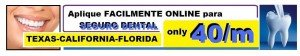 seguro dental barato miami