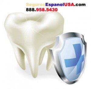 El Mejor Seguro Dental en Miami